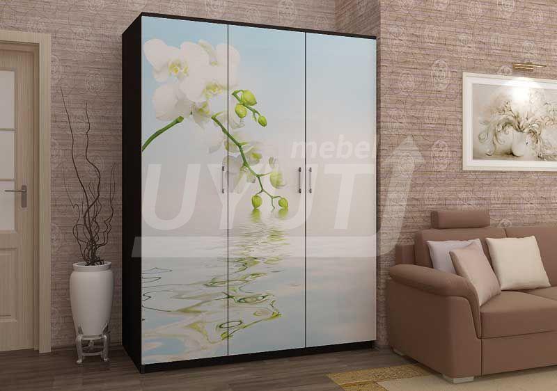 Шкаф-Орхидея-фотопечать